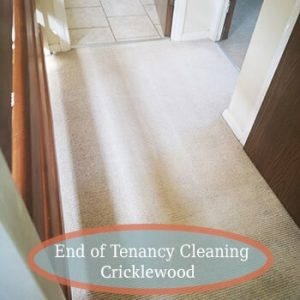 carpet cleaning services cricklewood